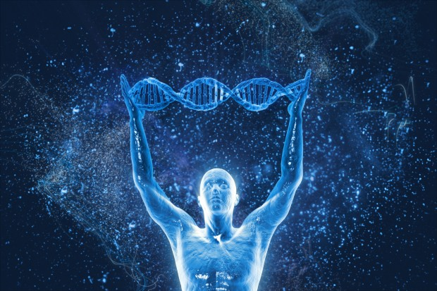 Maximize Your DNA