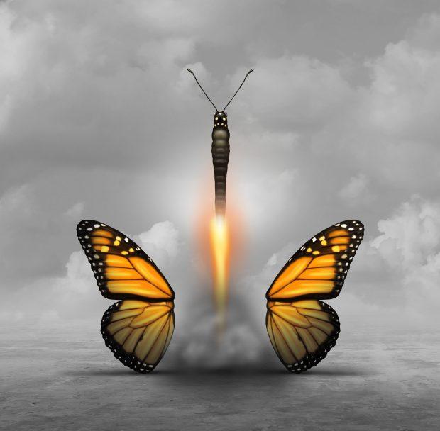 Blast Off Butterfly!